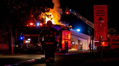 Orlando pet shelter fire: 20 to 30 cats likely killed in blaze, officials say